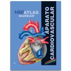 MARBÁN - Maxi Atlas 6 Aparato Cardiovascular